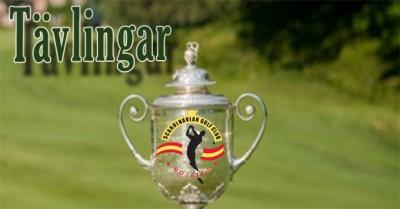 Spela med Scandinavian Golf Club